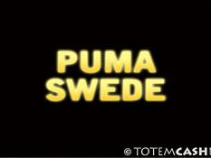Puma Swede showing