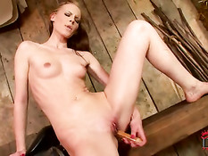 Hottie Gitta alone in the riding stable