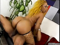 Big Ass Ebony Bitch Gets Doggy Fucked