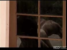 Ковбой ебёт на ранчо своего мускулистого приятеля