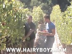 Два друга Франческо и Расти снимаются в гей порно в саду