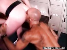 Волосатый лысый полицейский наслаждается минетом в раздевалке