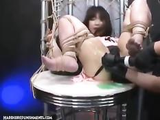 Связанная японская девка громко орёт, когда в неё входит вибратор