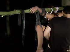 Мужик ночью в лесу привязал к дереву суку и оттрахал её в пизду