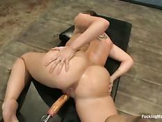 Сисястую девушку Kelly Divine трахают вибраторами и секс машиной