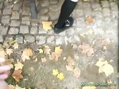 Развёл юную шлюху на минет и оттрахал в парке не снимая трусиков