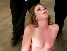 Страстная блондинка Jessie Andrews делает минет на буккаке оргии