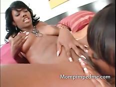 Сисястая чёрная лесбиянка Nyomi Banxxx даёт отлизать мулаточке