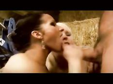 Сексуальные девушки дрочат члены руками и выдрачивают сперму