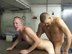 Бритый гей увидел что парень дрочит свой хуй и дал отсосать свой
