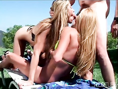 Two busty sluts and one cock in free nature