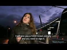 Он снял на ночном вокзале европейскую девку и отодрал в машине