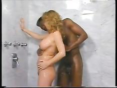Пышногрудая блондинка Tracey Adams в ванной трахается с негром