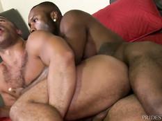 Чёрный гей вылизал мулату задницу и оттрахал рачком на кровати