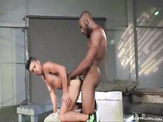 Мускулистые темнокожие мужчины занимаются страстным гей сексом