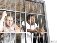 Чёрный гей оттрахал в тюремной камере своего белого сокамерника