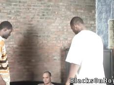 Лысый белый гей отсасывает у чёрных парней и подставляет жопу