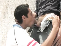 Латиноамериканские гомосексуальные ребята отсасывали в позе 69