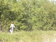Девка в солнцезащитных очках раздевается и мастурбирует на лугу