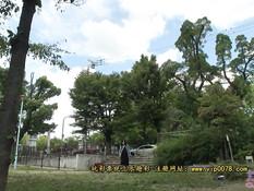 Парень отпердолил беременную японскую девушку во влагалище и анус
