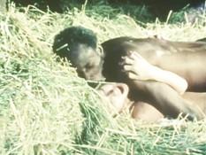 Чёрный мужчина ебёт на сеновале неудовлетворённую белую любовницу
