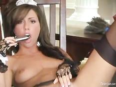 Tiffany Brooke as maid
