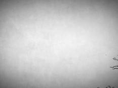 Secret desires of Triss / Секретные желания Трисс