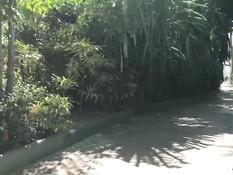 Светловолосая русская подруга отсасывает член на тропическом курорте