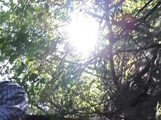 Привёл в лес горячую русскую девчонку и оттрахал во взмокшую пизду