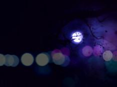 Taimanin Doujin 3 / Охотницы на демонов 3