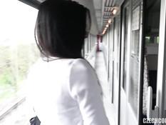 Две молодые пары свингеров занялись сексом в купе скоростного поезда