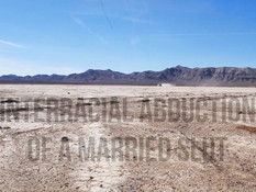Негр остановил автомобиль и оттрахал зрелую шатенку посреди пустыни