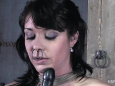Связанная сиськастая брюнетка выпорота и отпердолена в вагину и анус